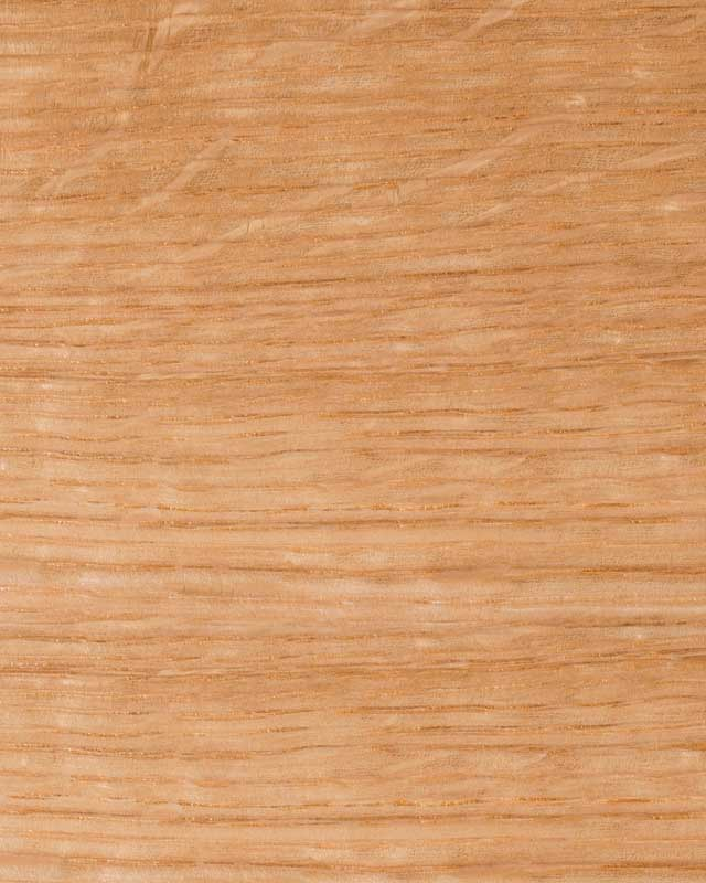 quasrter sawn white oak wood species